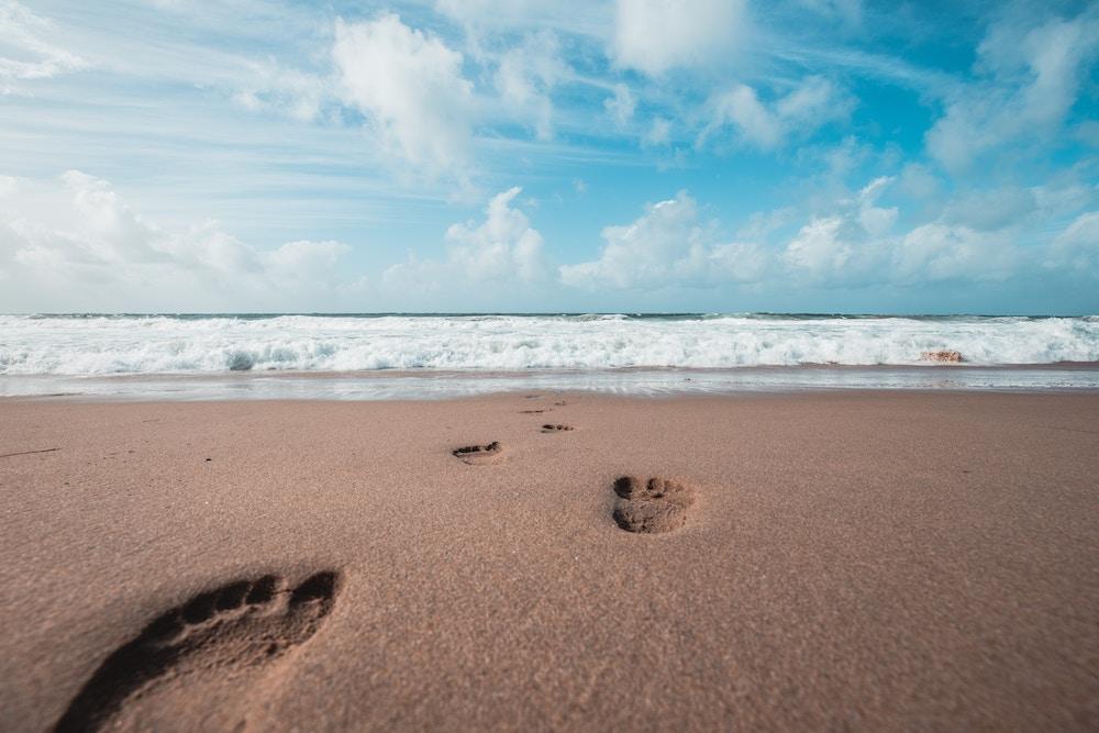 Carbon footprint: cambia la tua impronta